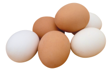 egg_png25